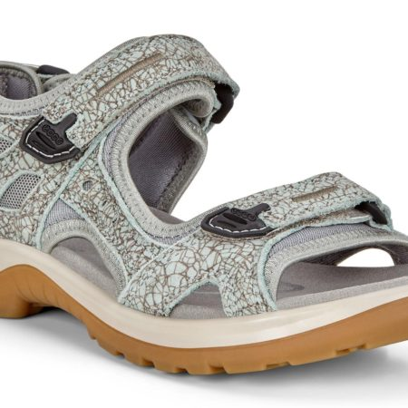 Ecco offroad iceflower