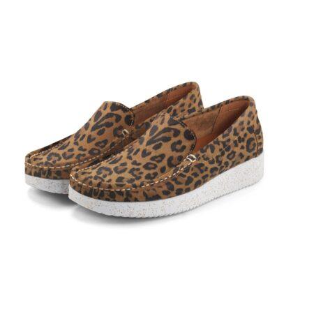 nature leopard elin